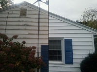 frances-mold-siding-1